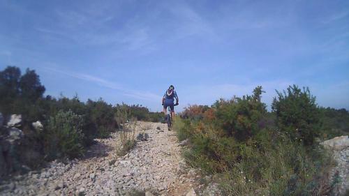 vlcsnap-2015-06-01-17h47m42s718